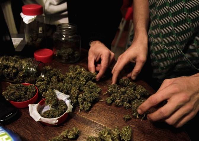 10 Mega Razones para legalizar la marihuana en Colombia.