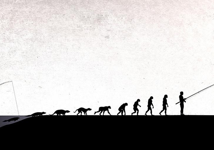 el-ciclo-de-la-vida